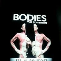 10/12/2012 tarihinde Cresta I.ziyaretçi tarafından BODIES...The Exhibition'de çekilen fotoğraf