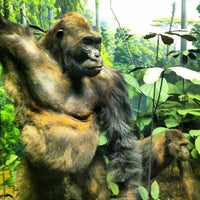 Photo taken at The Academy of Natural Sciences of Drexel University by Patrick R. on 2/15/2013