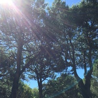 Photo taken at Camping Ca'Savio by Alexey S. on 6/24/2015