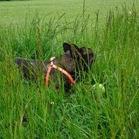Photo taken at Hurst Park by Robert D. on 5/30/2014