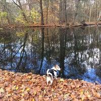 Das Foto wurde bei Neuer See von Karina K. am 11/18/2016 aufgenommen