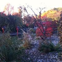 Photo taken at Japanischer Garten by Gregor on 10/21/2012