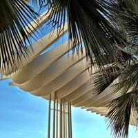 Foto tomada en Palmeral de las Sorpresas por Ricardo R. el 12/26/2012