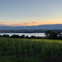 Photo taken at Cologny view by Aseel S. on 6/19/2018