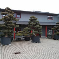 bonsai zentrum m nsterland gartencenter in ascheberg. Black Bedroom Furniture Sets. Home Design Ideas