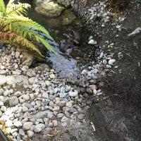Z Newtown Wellington Wellington Zoo - Newto...