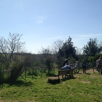 4/7/2013にStefano B.がParco Regionale dell'Appia Anticaで撮った写真