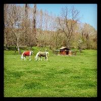 4/23/2013 tarihinde Mine A.ziyaretçi tarafından Şadibey Çiftliği'de çekilen fotoğraf