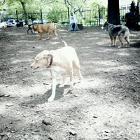 Photo taken at McCarren Dog Park by Ned R. on 5/14/2013