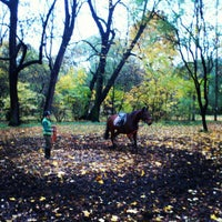 Photo taken at Конюшня (парк Екатерингоф) by Дмитрий В. on 10/21/2012