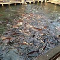 Photo taken at Ruen Pae Fishing Park by Tuen K. on 12/10/2012