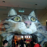 Photo taken at Muzium Kucing (Cat Museum) by YK L. on 1/21/2013
