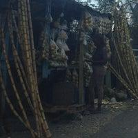 Photo taken at Bog Walk by oDessa on 12/25/2012