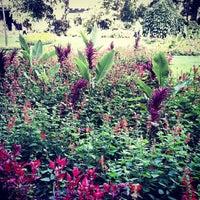 Photo prise au Whitehall Gardens par Xavier P. le8/25/2013