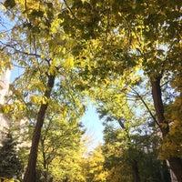 Photo taken at Viragkert by Gergely N. on 10/22/2016
