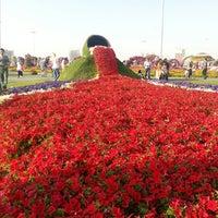 Photo taken at Dubai Miracle Garden by LordM on 3/2/2013