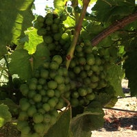 Photo taken at Robledo Family Winery by Kristin F. on 7/9/2013