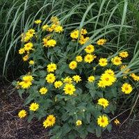 Photo taken at Wayne A Grube Memorial Park by Cheryl G. on 6/30/2013