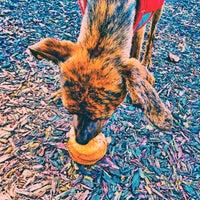 Photo taken at Heritage Dog Park by Kitten G. on 7/17/2015