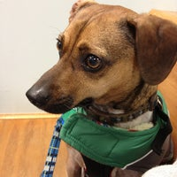 Photo taken at Acredale Animal Hospital & Grooming by Jessica B. on 12/28/2012