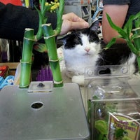 Photo taken at Global Pet Foods by Shayna on 5/12/2013