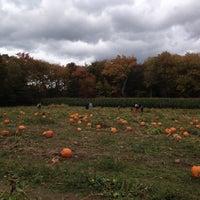 Photo taken at Salisbury Farm Corn Maze by Ed B. on 10/8/2012