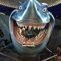 Снимок сделан в The Seas with Nemo & Friends пользователем André F. 2/7/2013