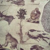 4/25/2014 tarihinde Busra B.ziyaretçi tarafından Büyük Saray Mozaikleri Müzesi'de çekilen fotoğraf