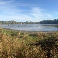 Photo taken at Stricker's Pond Park by Toni K. on 10/6/2014