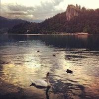 Photo taken at Blejsko Jezero / Lake Bled by Julia T. on 4/12/2013