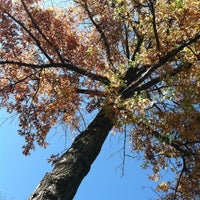Photo taken at Hoyt Playground by Cailean C. on 10/20/2012