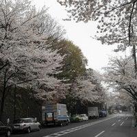 Photo taken at Tetsugakudo Park by Hiroshi S. on 3/27/2013