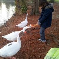 Photo taken at Parc de Bourran by Scalpel_33 on 12/11/2013
