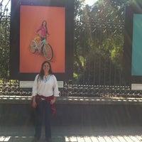 Das Foto wurde bei Galería Camellón Reforma Chapultepec von Cecilia S. am 12/16/2012 aufgenommen