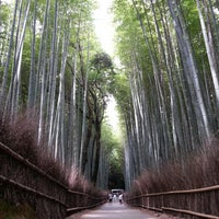 Photo taken at Arashiyama Bamboo Grove by Lui Cheuk Fung on 6/30/2013