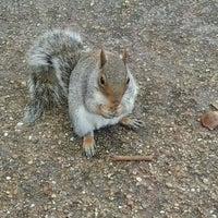 11/7/2012 tarihinde Nicola F.ziyaretçi tarafından Finsbury Park'de çekilen fotoğraf