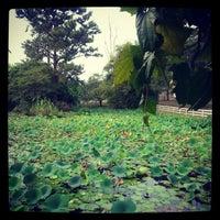 Photo taken at Hope Botanical Gardens by StunnerJ on 2/4/2013