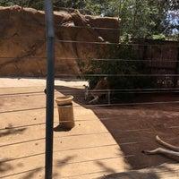 Photo taken at Kangaroo Exhibit by Deepankar M. on 7/3/2016