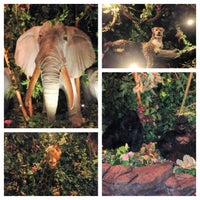 Photo taken at Rainforest Cafe by Ashley D. on 1/15/2013