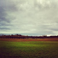 Photo taken at Black Star Farms Suttons Bay by Jason G. on 11/3/2012