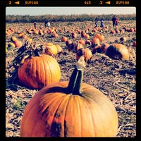 Photo taken at Eckert's Belleville Country Store & Farm by Larissa R. on 10/21/2012