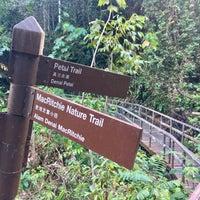 Das Foto wurde bei MacRitchie Nature Trail von gerard t. am 10/12/2016 aufgenommen