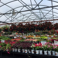 Photo taken at Calloway's Nursery by Alexander M. on 4/26/2016