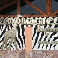 Photo taken at Zoologico Regional by Juanelo F. on 8/22/2013