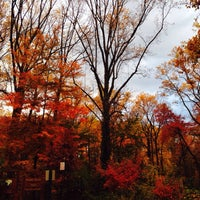 Photo taken at McLean Central Park by Maggie M. on 11/2/2013
