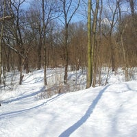 3/25/2013 tarihinde Nils B.ziyaretçi tarafından Volkspark Schönholzer Heide'de çekilen fotoğraf