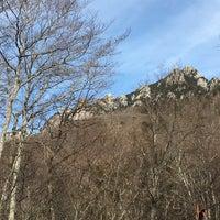 1/7/2018にvvnがみずがき山自然公園で撮った写真