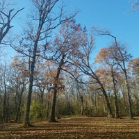 Photo taken at Glenview Woods (Cook County Forest Preserve) by John R. on 11/10/2016