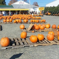 รูปภาพถ่ายที่ Golden Harvest Farms โดย Jessica P. เมื่อ 10/13/2013
