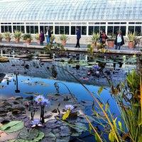 Photo taken at Monet's Garden at The New York Botanical Garden by Christine C. on 10/21/2012